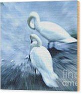 Pair Of Swans Wood Print