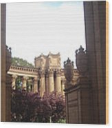 Palace Of Fine Arts 8 Wood Print
