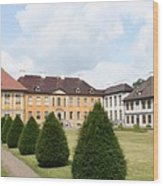 Palace Oranienbaum - Germany Wood Print