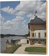 Palace Pillnitz And River Elbe Wood Print