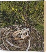 Palacios Texas Pulley Wire And Flowers Wood Print