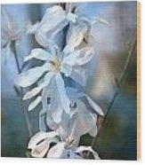 Pale Blue Wood Print