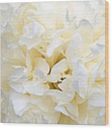 Pale Peony Wood Print