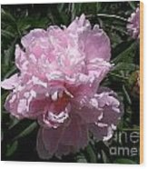 Pale Pink Peony Watercolor Effect Wood Print
