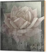 Pale Rose Photoart Wood Print by Debbie Portwood