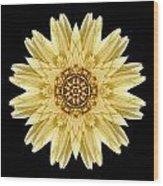 Pale Yellow Gerbera Daisy I Flower Mandala Wood Print by David J Bookbinder