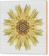 Pale Yellow Gerbera Daisy I Flower Mandala White Wood Print