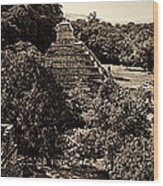 Palenque From The Jungle Panorama Sepia Wood Print