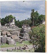 Palenque Ruins Wood Print