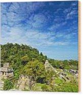 Palenque View Wood Print