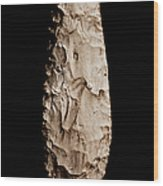 Paleolithic Tool 2 No Text Wood Print