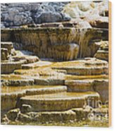 Palette Spring 2 Yellowstone National Park Wy Wood Print