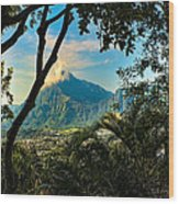 Pali Lookout For Puu Alii Wood Print