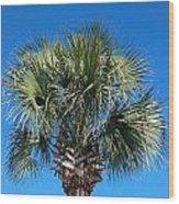 Palm Against Blue Sky Wood Print