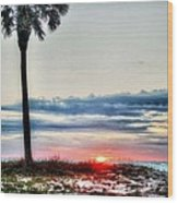 Palm And Sun Wood Print