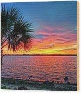 Palm Beach Sunset Wood Print