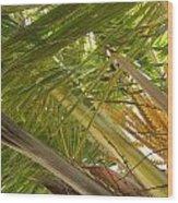 Palm Blossoms Wood Print