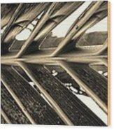 Palms E Sepia Wood Print