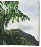 Palm Fronds El Yunque Wood Print