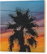 Palm In The Sunset Wood Print