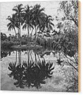 Palm Island  Wood Print