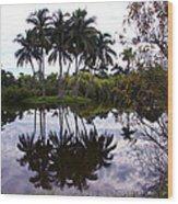 Palm Island I Wood Print