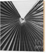 Palm Leaf 6684bw Wood Print