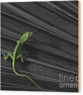 Palm Leaf Lizard Wood Print