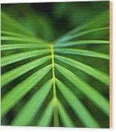 Palm Leaf Pattern Wood Print