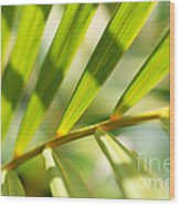 Palm Leaves Pattern Wood Print