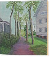 Palm Row In St. Augustine Florida Wood Print