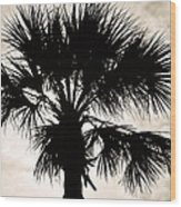 Palm Sihlouette Wood Print