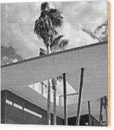 Palm Springs Animal Shelter Palms Bw Palm Springs Wood Print