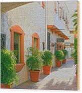 Palm Springs Courtyard Wood Print
