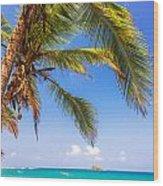 Palm Tree And Caribbean Wood Print