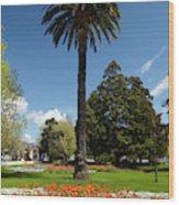 Palm Tree And Flower Gardens, Seymour Wood Print