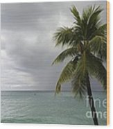 Palm Tree And Ocean Wood Print