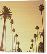 Palm Tree At Sunset On Beverly Hills Wood Print