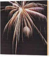 Palm Tree Fireworks Wood Print
