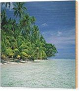 Palm Tree Lined Beach Papua New Guinea Wood Print
