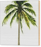 Palm Tree Number 2 Wood Print