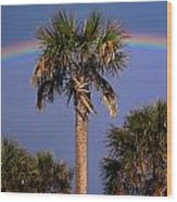 Palm Tree Rainbow Wood Print