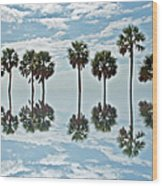 Palm Tree Reflection Wood Print