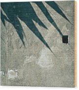 Palm Tree Shadow On Wall With Holes Wood Print