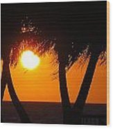 Palm Tree Silhouette At Sunset Wood Print