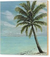 Palm Tree Study Wood Print by Cecilia Brendel