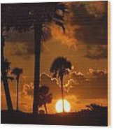 Palm Tree Sunrise In Gulf Shores Wood Print