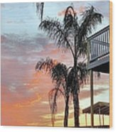 Palm Tree Sunrise  In New England Wood Print