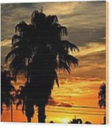 Palm Tree Silhouette Wood Print