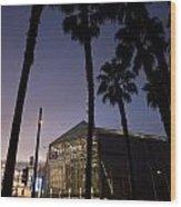 Palm Trees And Hp Pavilion San Jose At Night Wood Print